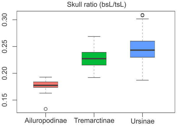 Boxplot of the skull ratio (bsL/tsL ) per subfamilies where significant differences amongst them are observed.