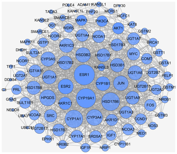 PPI network of naringenin-mediated proteins.