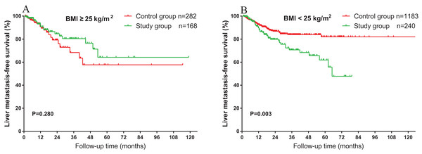 Impact of BMI on the association between HS and liver metastasis.