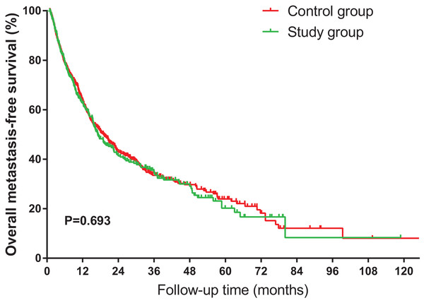 Kaplan–Meier curves of overall metastasis-free survival for NSCLC patients, stratified by HS.