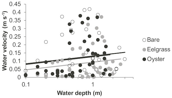 Water velocity during drifts when water was at different depths over three intertidal habitat types at five sites in Washington State, USA.