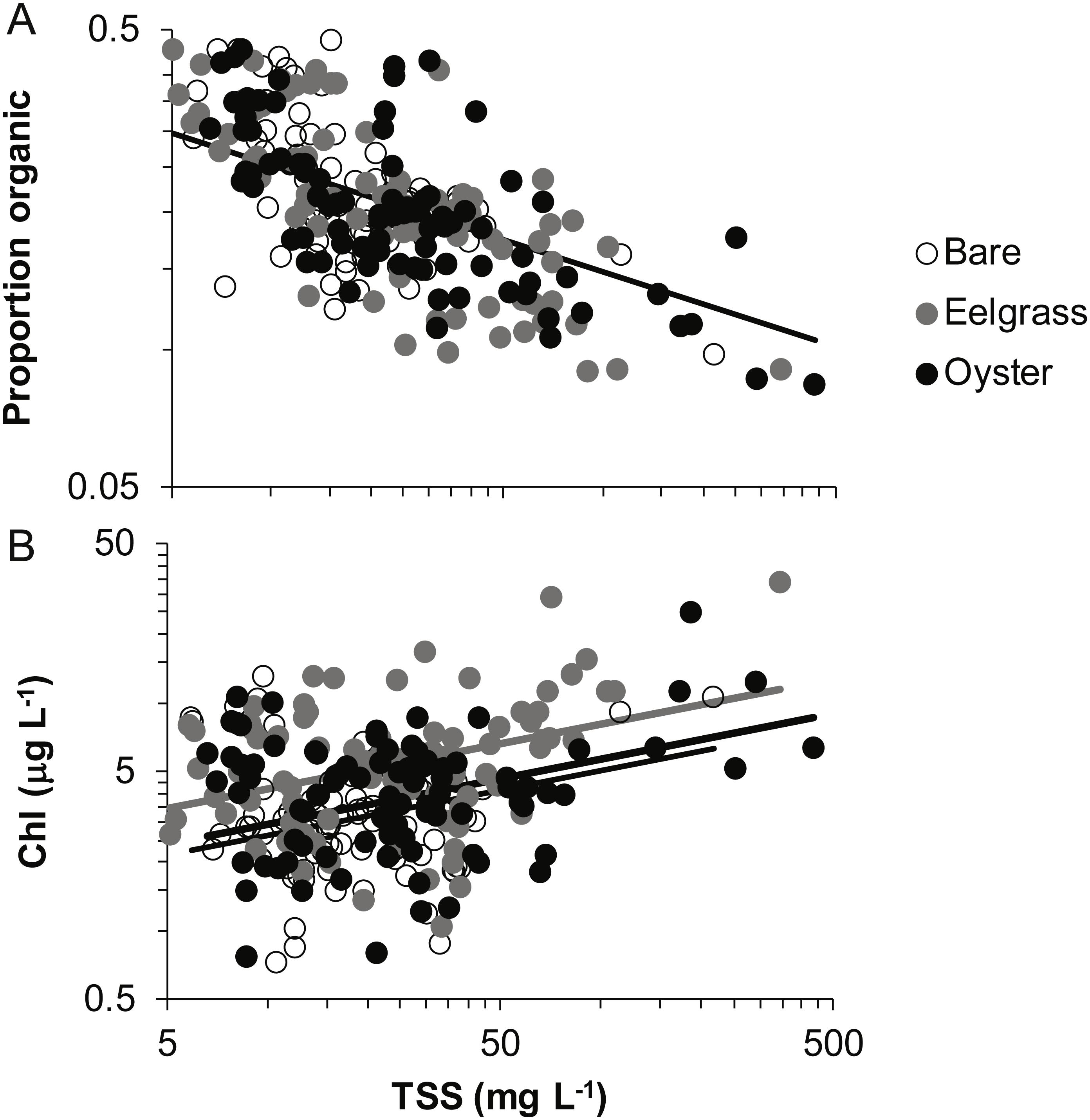 Comparison of shallow-water seston among biogenic habitats on tidal