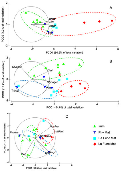 Principal coordinate analyses (PCoA) of Octopus mimus females of different reproductive stages.