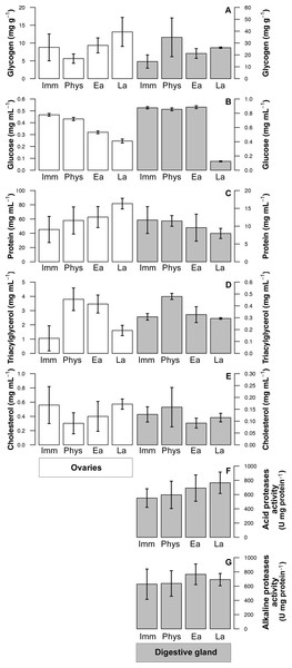 Metabolites and digestive enzyme activities determined in Octopus mimus females of different reproductive stages.
