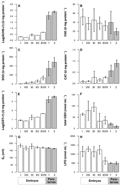 Detoxification and oxidative stress indicators determined in Octopus mimus embryos and paralarvae maintained in laboratory conditions (16 °C).