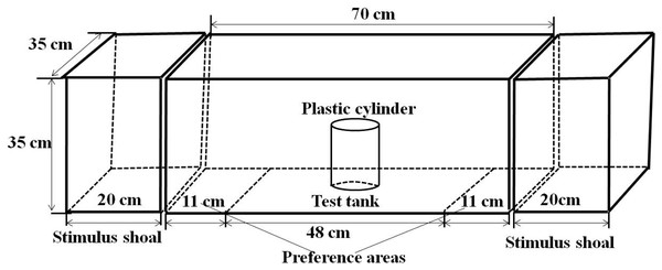 Experimental setup showing the structure of experimental arena.