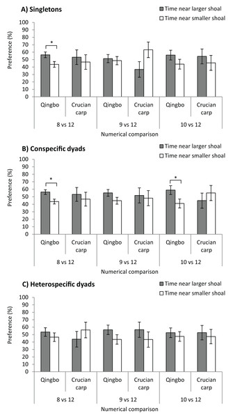 The shoal test of qingbo and crucian carp in both singletons (A) and dyads (both conspecific and heterospecific) (B and C) under different numerical comparisons.