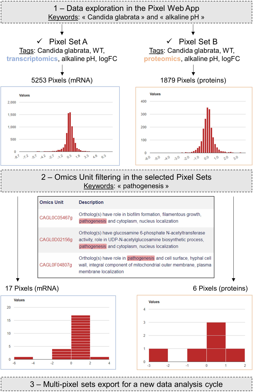 Pixel: a content management platform for quantitative omics data [PeerJ]