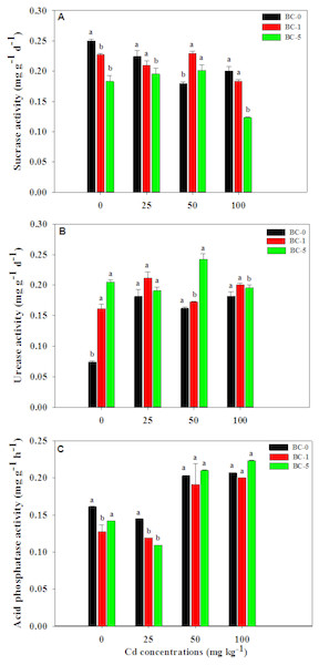 Enzymatic activities after biochar addition.