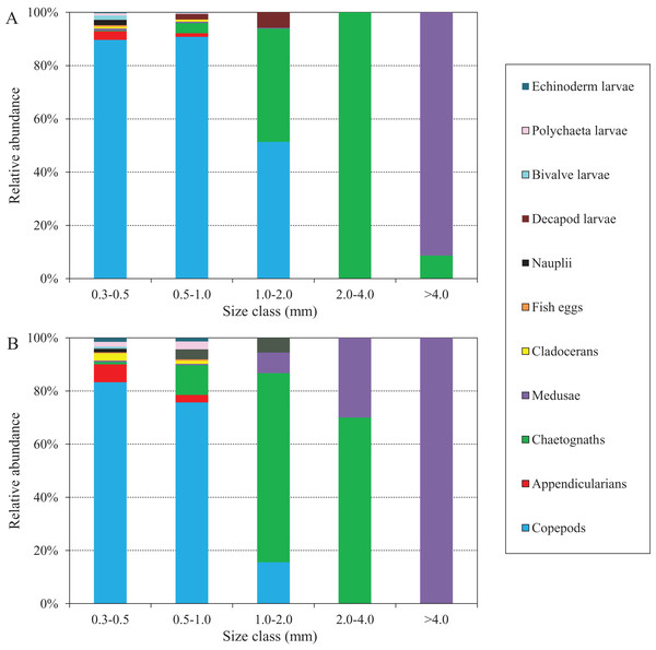 Abundance composition of zooplankton taxonomic groups in each size classes during summer (June–August) at the sampling station.