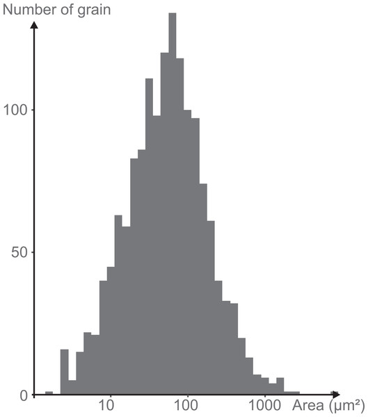 Log-normal distribution of the grain size of the minerals attached to the mica plate.