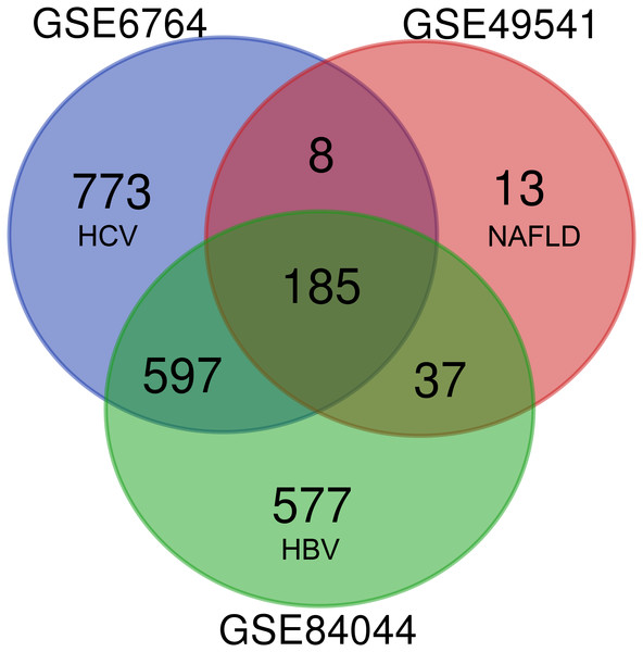 Venn diagram of DEGs from the three cohort profile sets (GSE6764, GSE49541, GSE84044), generated using an online tool.