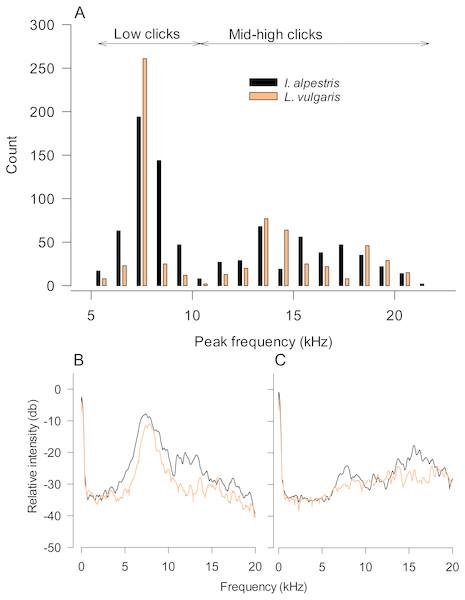 Underwater sound production varies within not between species in