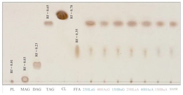 Thin-layer chromatogram of non-polar lipid of Rhodobacter sp. KKU-PS1.