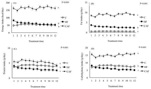 Energy and nutrient intakes during the study weeks in rats fed a control (C, n=6), high fat (HF, n=6) or cafeteria diet (CAF, n=6).
