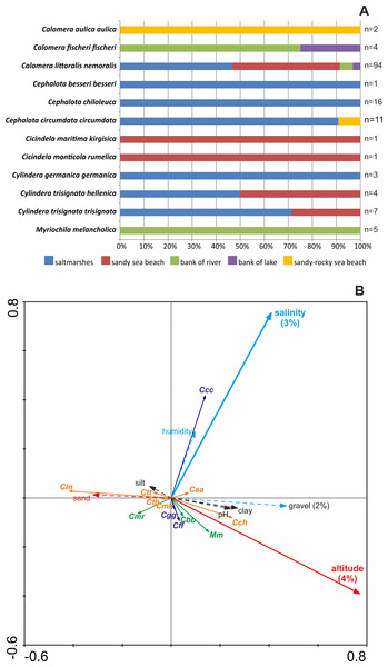 Distribution of recorded Cicindelidae species along investigated macrohabitats (A) and gradients of investigated physico-chemical parameters (B).