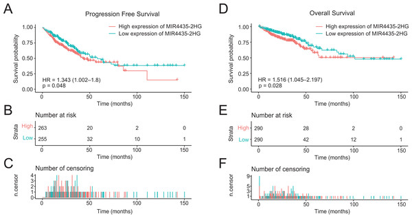 High expression of LncRNA MIR4435-2HG is associated with poor PFS and OS in patients with colorectal cancer.