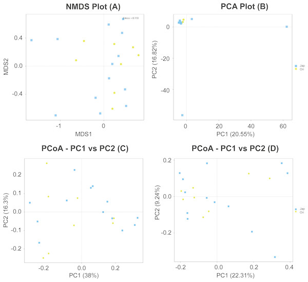 NMDS (A), PCA (B) and PCoA (C & D) of fecal bacterial community structures of Amur leopard and North Chinese leopard.
