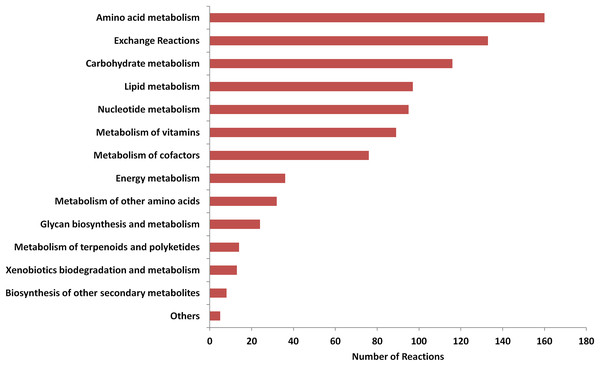 Distribution of reactions in metabolic subsystems.