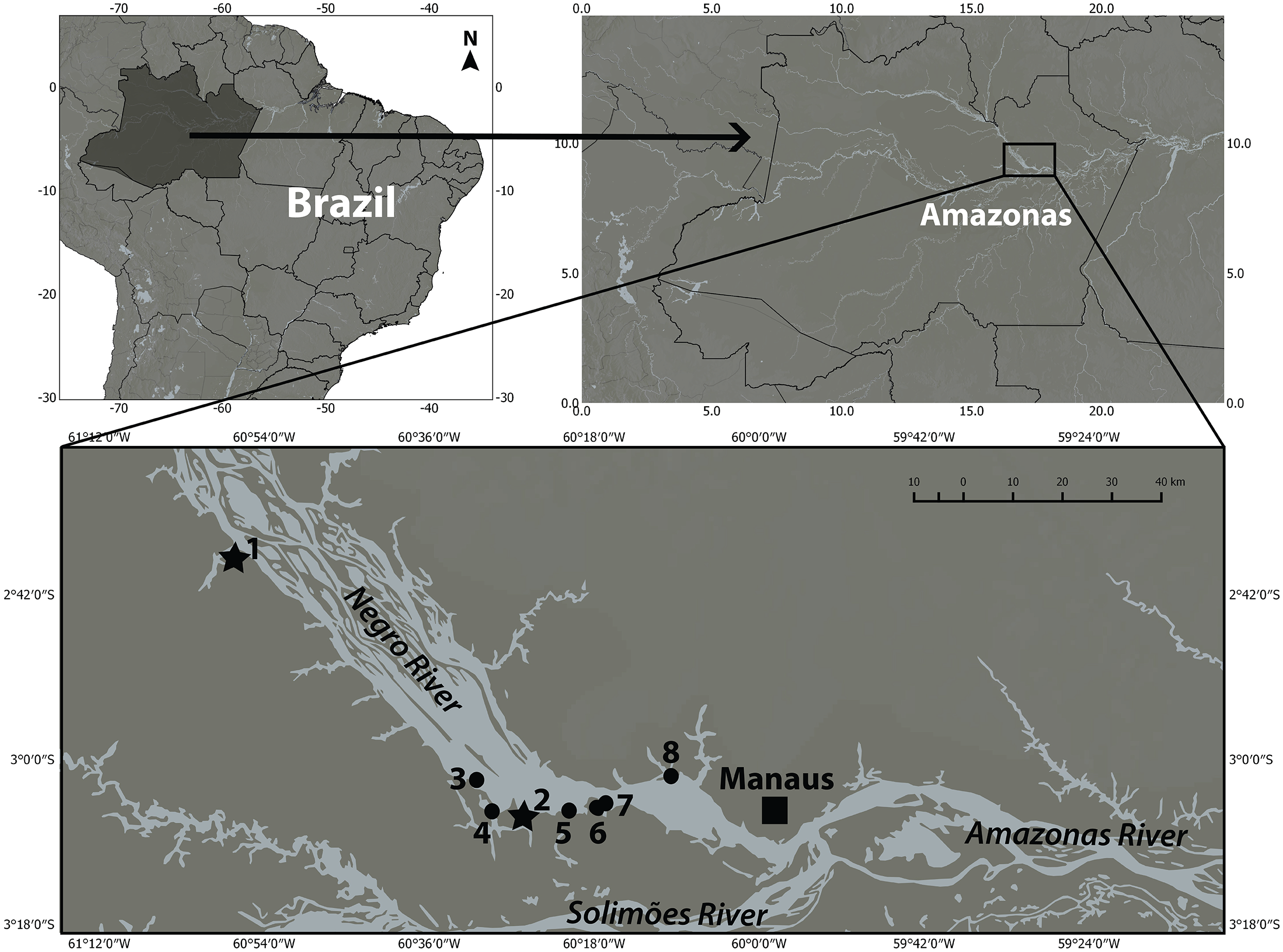 Boto (Inia geoffrensis—Cetacea: Iniidae) aggregations in two