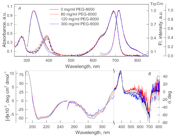 The effect of crowding agent PEG-8000 on the spectral properties of iRFP713 in the holoform.