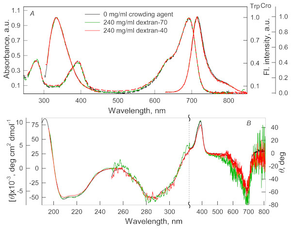 The effect of crowding agents Dextran-40 and Dextran-70 on the spectral properties of iRFP713 in the holoform.