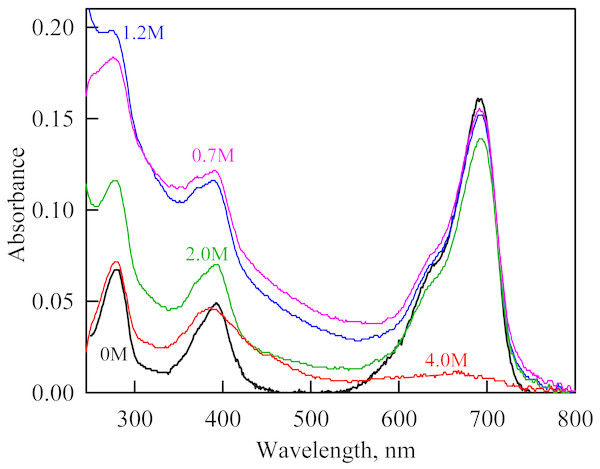 The change in the recorded absorption spectra of iRFP713 in the holoform at GdnHCl-induced unfolding in the presence of PEG-8000 at a concentration of 80 mg/ml.