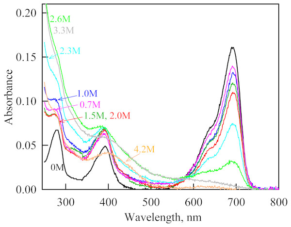 The change in the recorded absorption spectra of iRFP713 in the holoform at GdnHCl-induced unfolding in the presence of Dextran-40 at a concentration of 240 mg/ml.
