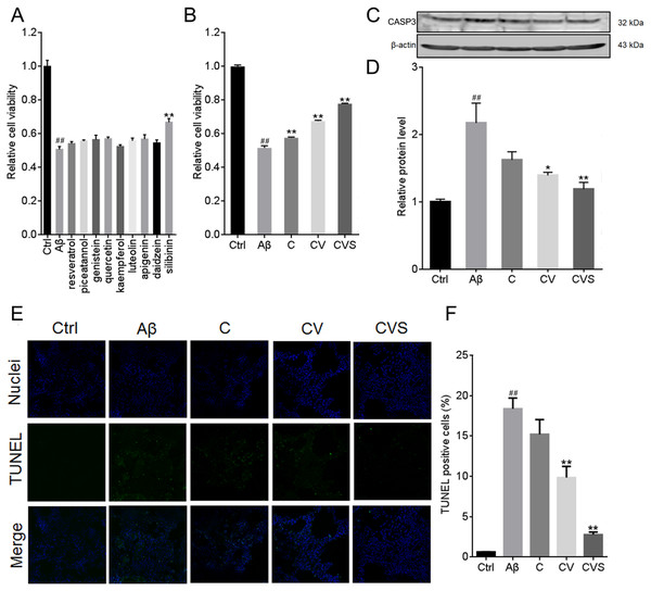 CVS treatment inhibits Aβ25−35-induced PC12 cell apoptosis.