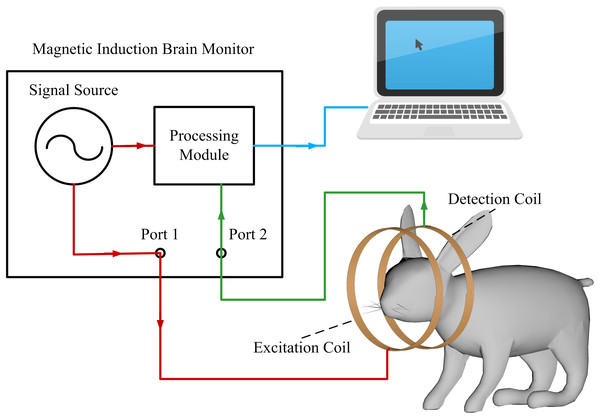 The schematic of the detection system.