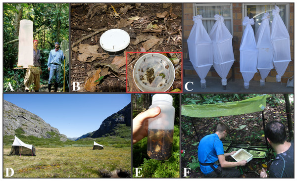 Entomological mass-sampling techniques.