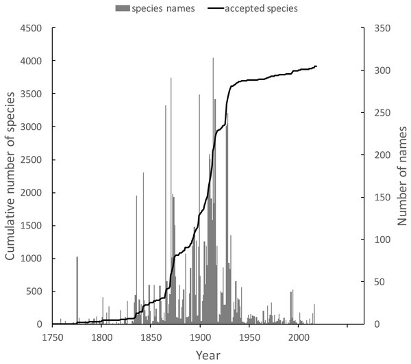 Plot of the history of species discovery for Australian weevils.