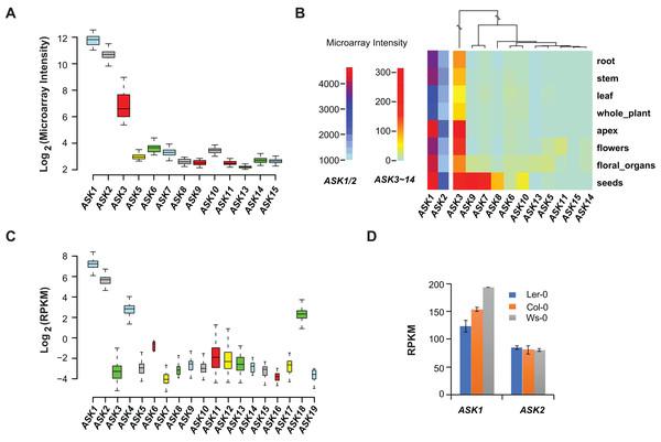 Expression variation of ASK genes.
