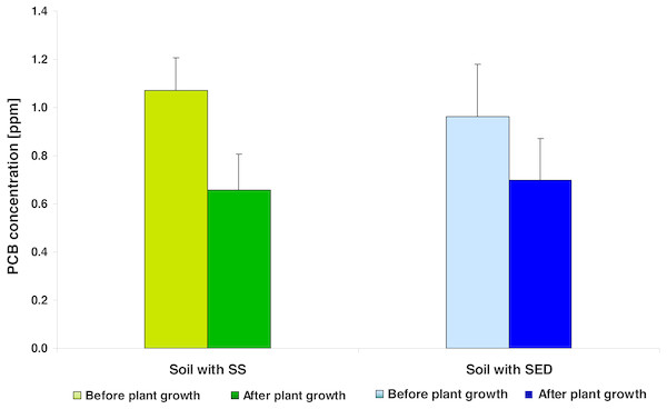 The average PCB concentration (average ± SD) in the soil fertilized with SS from LM WWTP (green bars) and SED from SSBS (blue bars), before and after five weeks of cultivation.