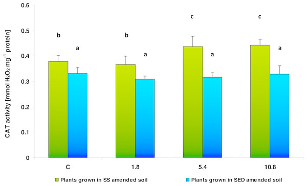 CAT activity in control cucumber leaves and in leaves of plants grown on soil amended with SS from LM WWTP (green bars) or SED from SSBS (blue bars) used in different doses after five weeks of cultivation.