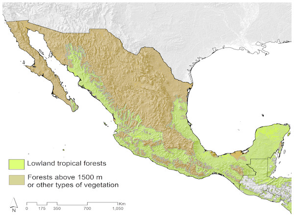 Geographical limits of the three delimited tyrant flycatchers datasets on the basis of the species distributed within Mexico.