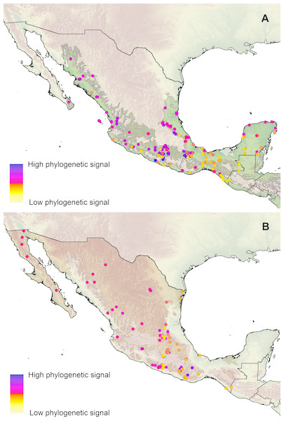 Geographical patterns of phylogenetic signal.