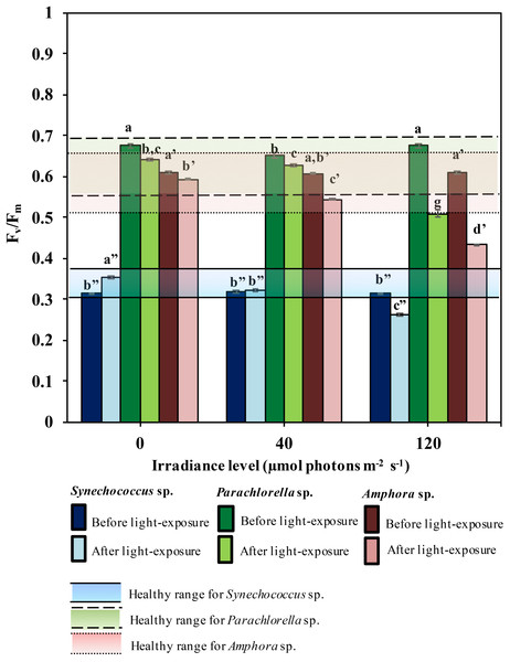 The non-stress range and the changes of maximum quantum yield, Fv∕Fm, before and after 12-hour in dark and light-exposure of the three microalgae (n = 6)