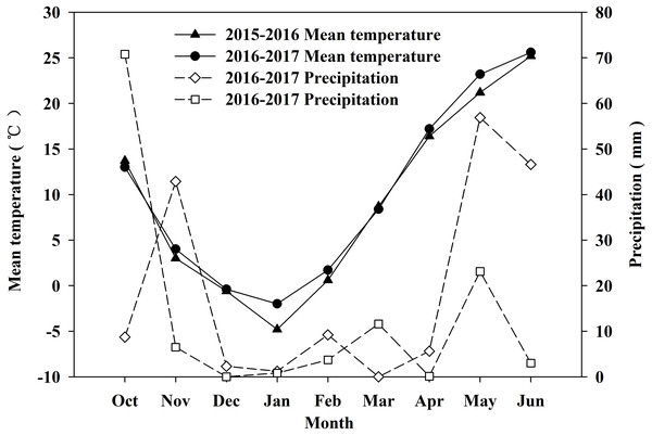 Monthly precipitation and temperature during 2015–2016 and 2016–2017 winter wheat growing seasons.