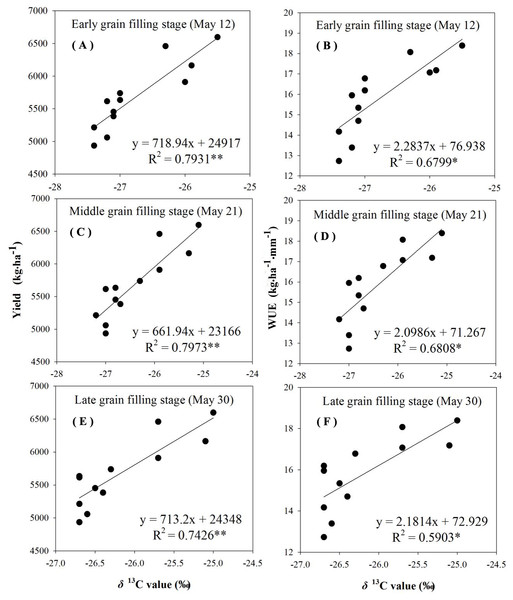 Regressions of stable carbon isotope ratio (δ13C) value in wheat flag leaves with grain yield and water use efficiency (WUE) during different grain filling stages under rain-fed condition in 2015–2016.