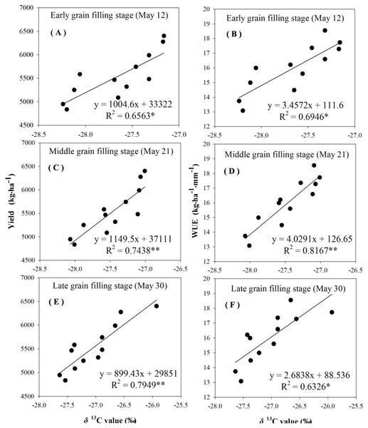 Regressions of stable carbon isotope ratio (δ13C) value in wheat flag leaves with grain yield and water use efficiency (WUE) during different grain filling stages under rain-fed condition in 2016–2017.