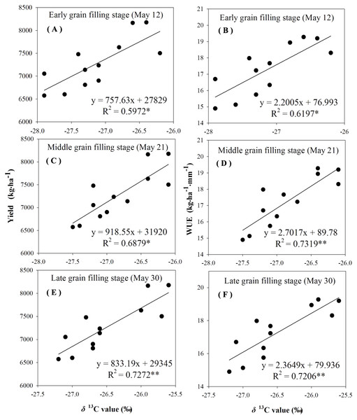 Regressions of stable carbon isotope ratio (δ13C) value in wheat flag leaves with grain yield and water use efficiency (WUE) during different grain filling stages under supplement irrigation condition in 2016–2017.