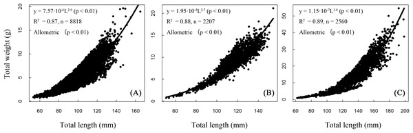 Total length–weight relationships of T. swinhonis in (A) Biandantang Lake, (B) Shengjin Lake and (C) Kuilei Lake.