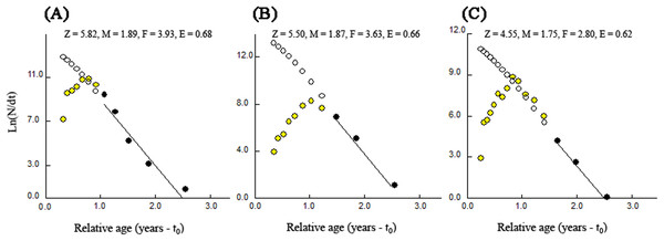 Length-converted catch curves used to estimate total mortality (Z) of T. swinhonis collected from (A) BDT, (B) SJH and (C) KLH along the middle and lower reaches of the Yangtze River basin, China.