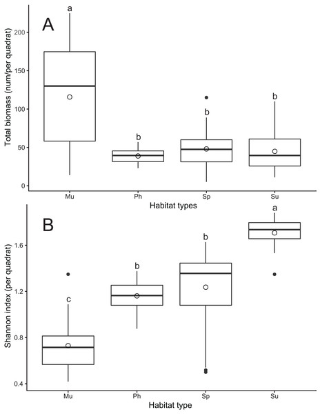 Differences in crab biomass (A) and Shannon diversity index (B) among four habitat types at Yancheng National Nature Reserve.