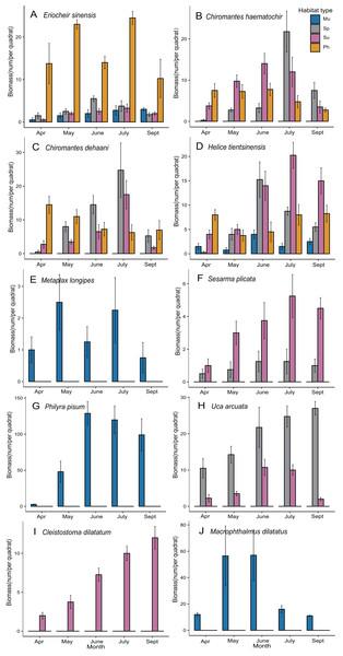 Plots of spatiotemporal variation of individual species biomass.