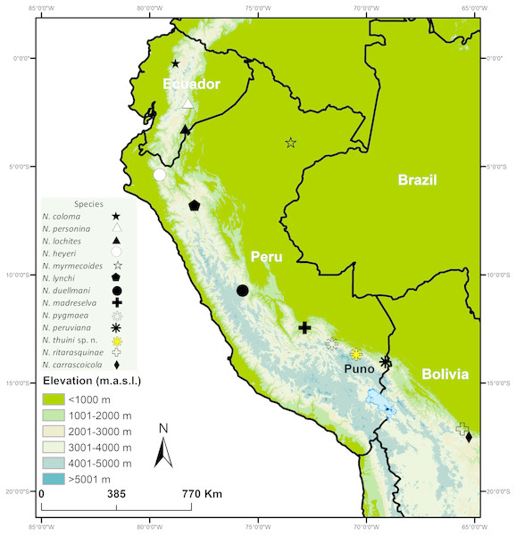 Map showing type localities of species in the genus Noblella (Anura, Strabomantidae).