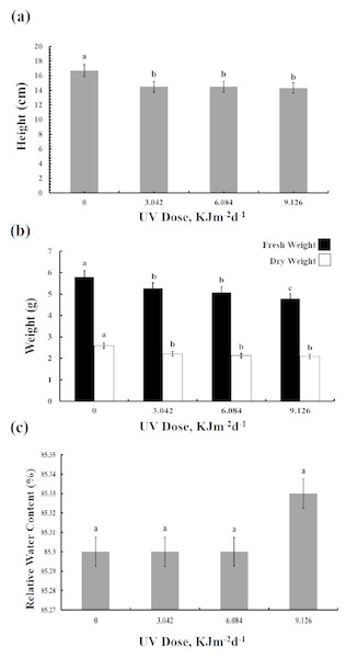 Effects of three different doses of UV-B radiation (3.042, 6.084 and 9.126 kJm−2d−1) on (A) plant height, (B) plant fresh and dry weight, and (C) relative water content.