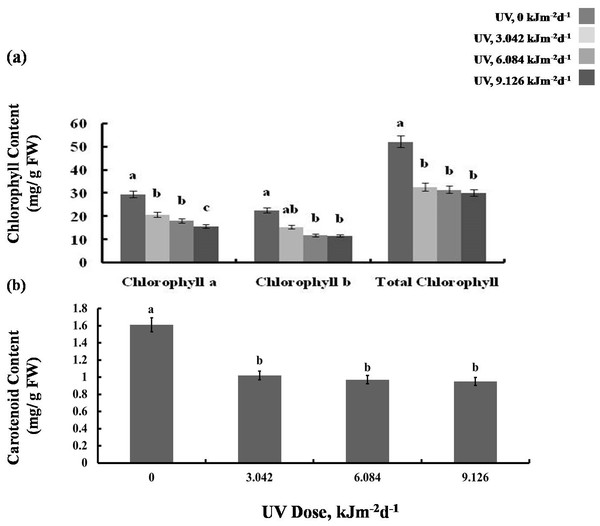 Effects of three different doses of UV-B radiation (3.042, 6.084 and 9.126 kJm−2d−1) on (A) chlorophyll, and (B) carotenoid content.