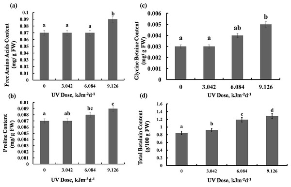 Effects of three different doses of UV-B radiation (3.042, 6.084 and 9.126 kJm−2d−1) on contents of (A) free amino acids, (B) proline, (C) glycine betaine and (D) total betalain.